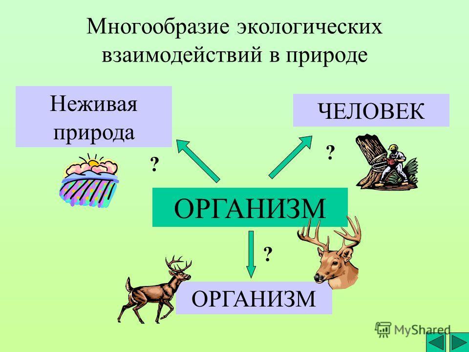 Многообразие экологических взаимодействий в природе ОРГАНИЗМ Неживая природа ЧЕЛОВЕК ОРГАНИЗМ ? ? ?