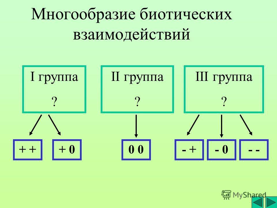 Многообразие биотических взаимодействий I группа ? II группа ? III группа ? + + 00 - +- - 0