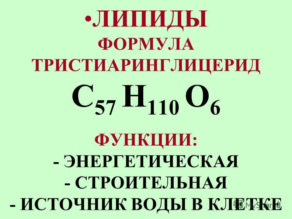 УГЛЕВОДЫ ФОРМУЛА, СОСТАВ: (C 6 H 12 O 6 ) n ФУНКЦИИ: - ЭНЕРГЕТИЧЕСКАЯ - СТРОИТЕЛЬНАЯ