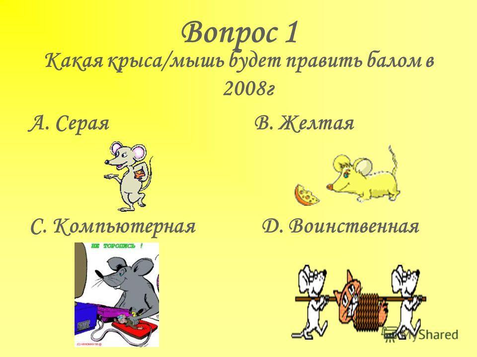Вопрос 1 Какая крыса/мышь будет править балом в 2008г А. Серая В. Желтая С. Компьютерная D. Воинственная