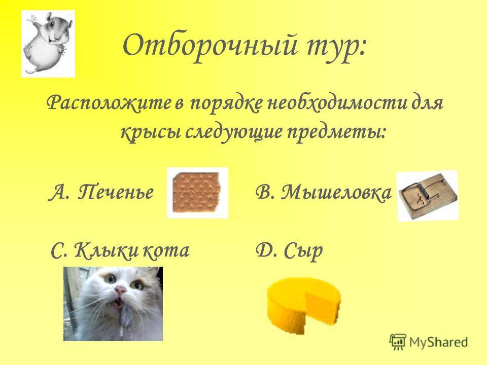 Отборочный тур: Расположите в порядке необходимости для крысы следующие предметы: A.ПеченьеВ. Мышеловка С. Клыки котаD. Сыр