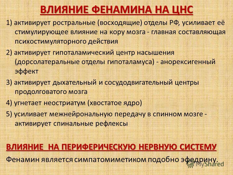 1) активирует ростральные (восходящие) отделы РФ, усиливает её стимулирующее влияние на кору мозга - главная составляющая психостимуляторного действия 2) активирует гипоталамический центр насышения (дорсолатеральные отделы гипоталамуса) - анорексиген
