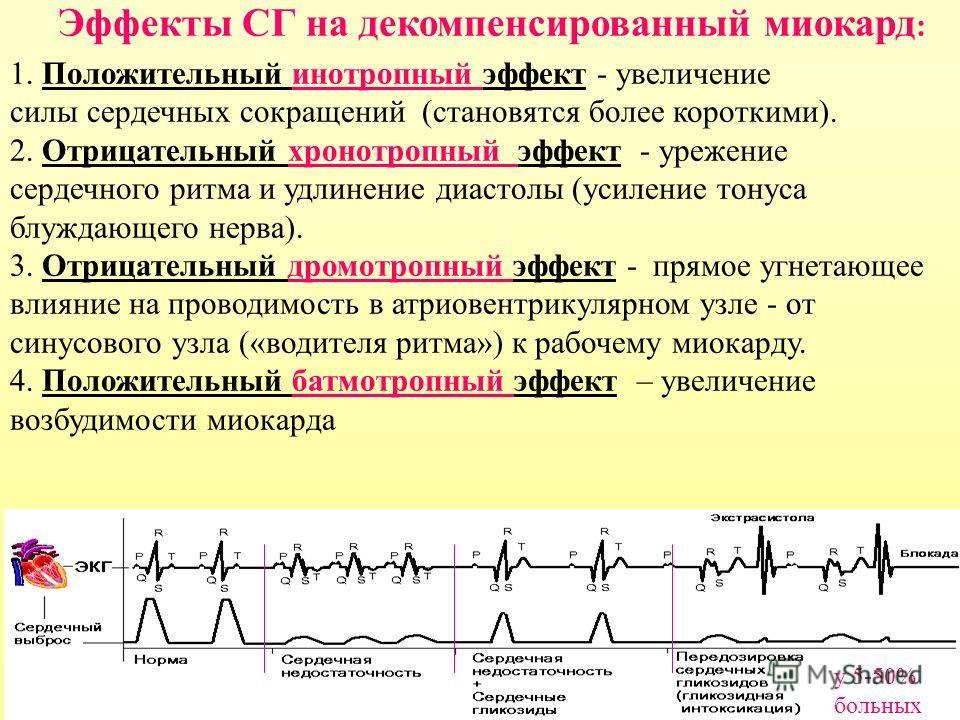 Эффекты СГ на декомпенсированный миокард : 1. Положительный инотропный эффект - увеличение силы сердечных сокращений (становятся более короткими). 2. Отрицательный хронотропный эффект - урежение сердечного ритма и удлинение диастолы (усиление тонуса