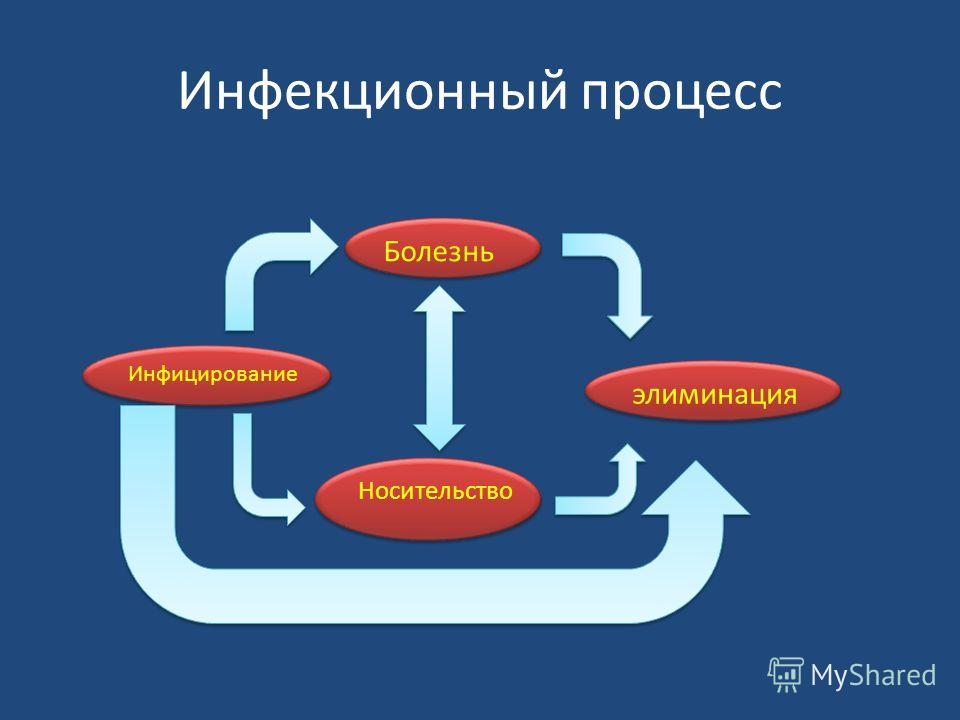 Инфекционный процесс Инфицирование Болезнь элиминация Носительство