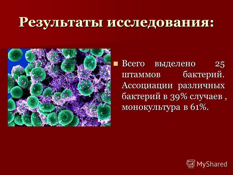 Результаты исследования: Всего выделено 25 штаммов бактерий. Ассоциации различных бактерий в 39% случаев, монокультура в 61%. Всего выделено 25 штаммов бактерий. Ассоциации различных бактерий в 39% случаев, монокультура в 61%.