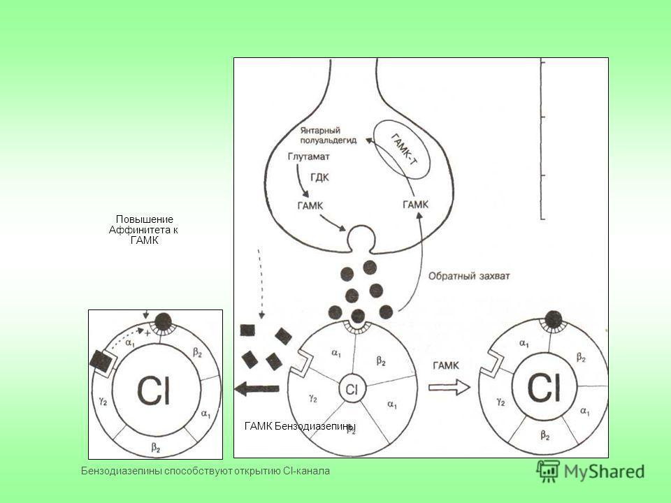 Повышение Аффинитета к ГАМК ГАМК Бензодиазепины Бензодиазепины способствуют открытию Сl-канала