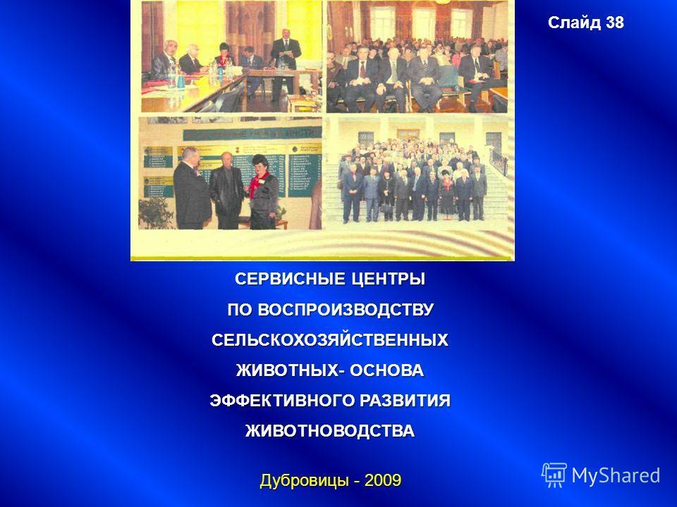 Слайд 38 СЕРВИСНЫЕ ЦЕНТРЫ ПО ВОСПРОИЗВОДСТВУ СЕЛЬСКОХОЗЯЙСТВЕННЫХ ЖИВОТНЫХ- ОСНОВА ЭФФЕКТИВНОГО РАЗВИТИЯ ЖИВОТНОВОДСТВА Дубровицы - 2009