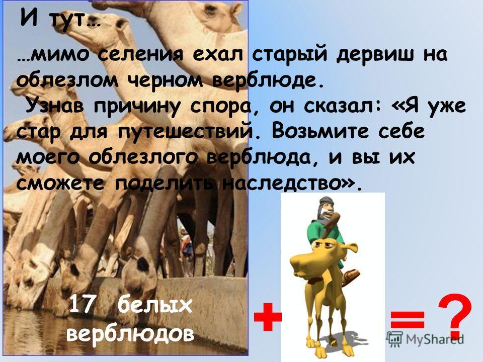 …мимо селения ехал старый дервиш на облезлом черном верблюде. Узнав причину спора, он сказал: «Я уже стар для путешествий. Возьмите себе моего облезлого верблюда, и вы их сможете поделить наследство». И тут… 17 белых верблюдов ?