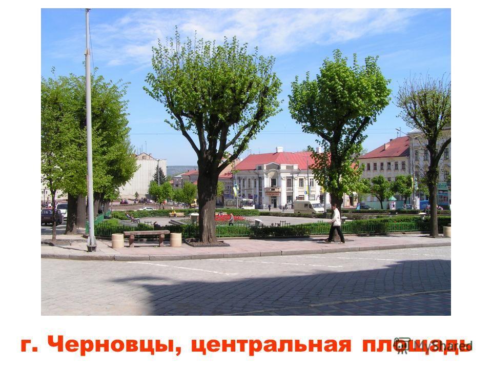 ратуша в г. Мукачево