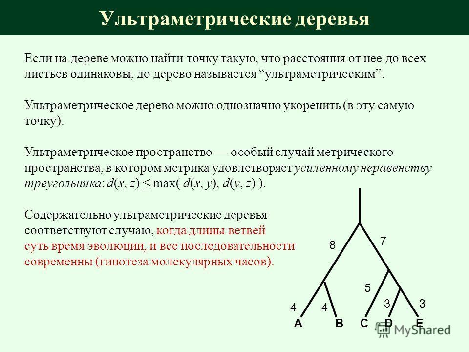 Если на дереве можно найти точку такую, что расстояния от нее до всех листьев одинаковы, до дерево называется ультраметрическим. Ультраметрическое дерево можно однозначно укоренить (в эту самую точку). Ультраметрическое пространство особый случай мет