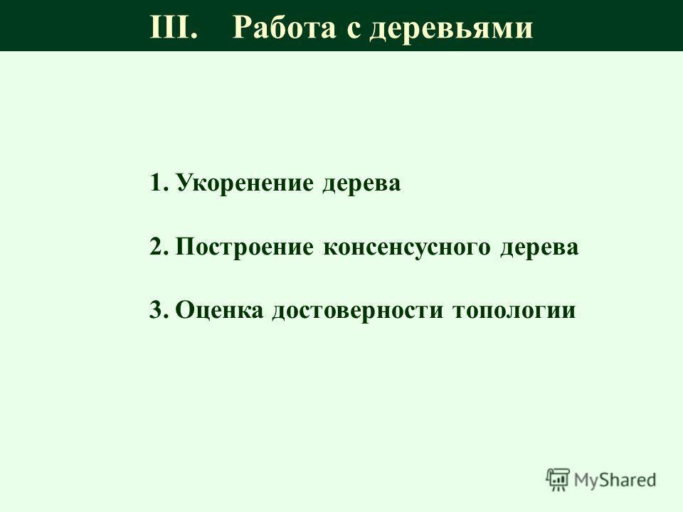 III. Работа с деревьями 1.Укоренение дерева 2.Построение консенсусного дерева 3.Оценка достоверности топологии