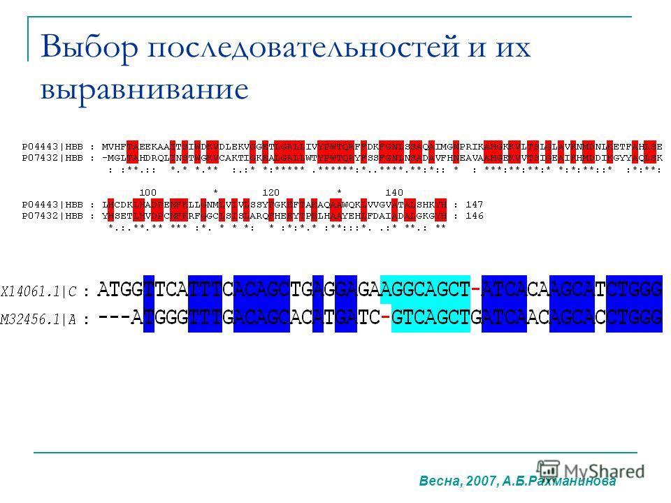 Выбор последовательностей и их выравнивание Весна, 2007, А.Б.Рахманинова