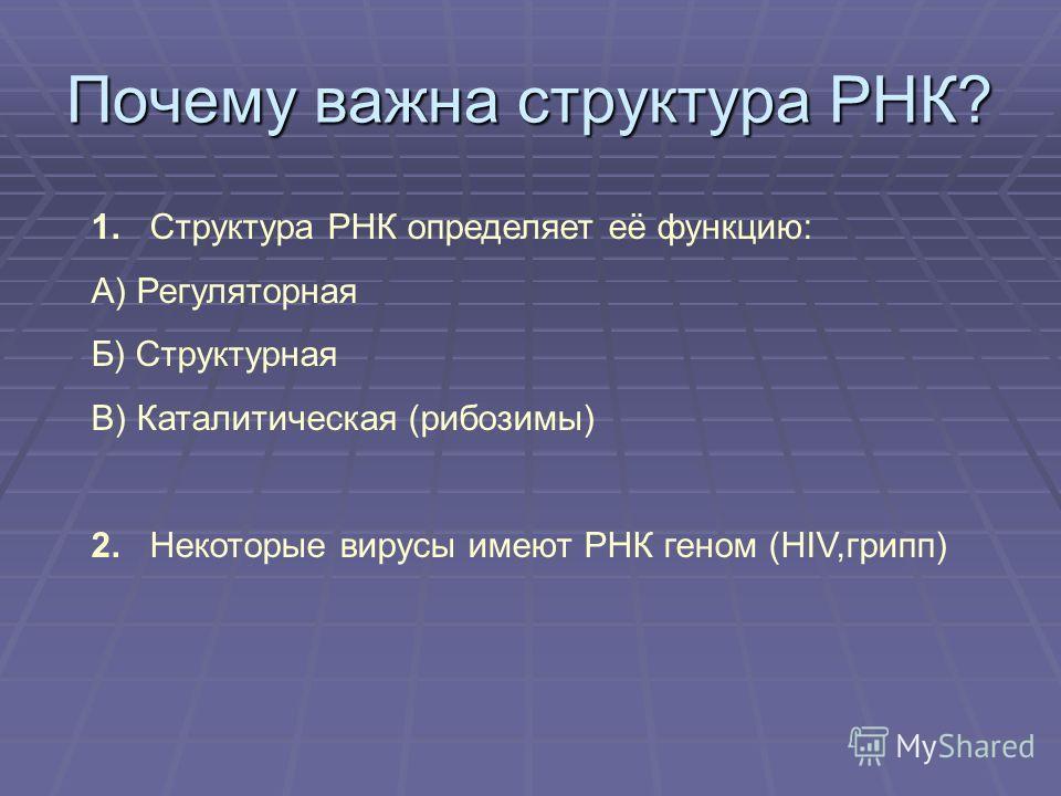 Почему важна структура РНК? 1. Структура РНК определяет её функцию: А) Регуляторная Б) Структурная В) Каталитическая (рибозимы) 2. Некоторые вирусы имеют РНК геном (HIV,грипп)