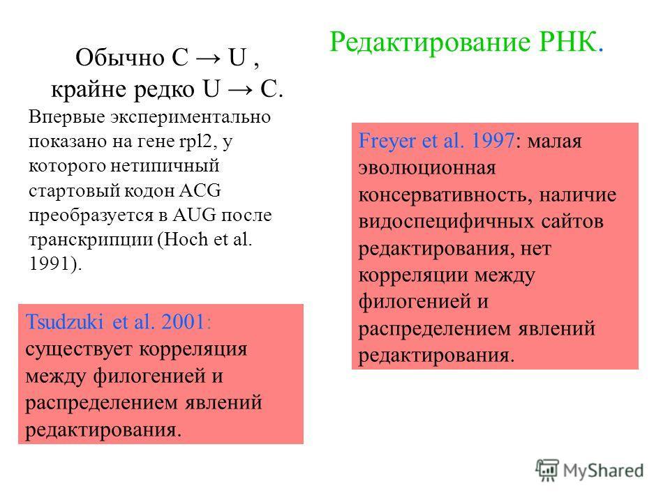 Обычно С U, крайне редко U C. Впервые экcпериментально показано на гене rpl2, у которого нетипичный стартовый кодон ACG преобразуется в AUG после транскрипции (Hoch et al. 1991). Редактирование РНК. Freyer et al. 1997: малая эволюционная консервативн