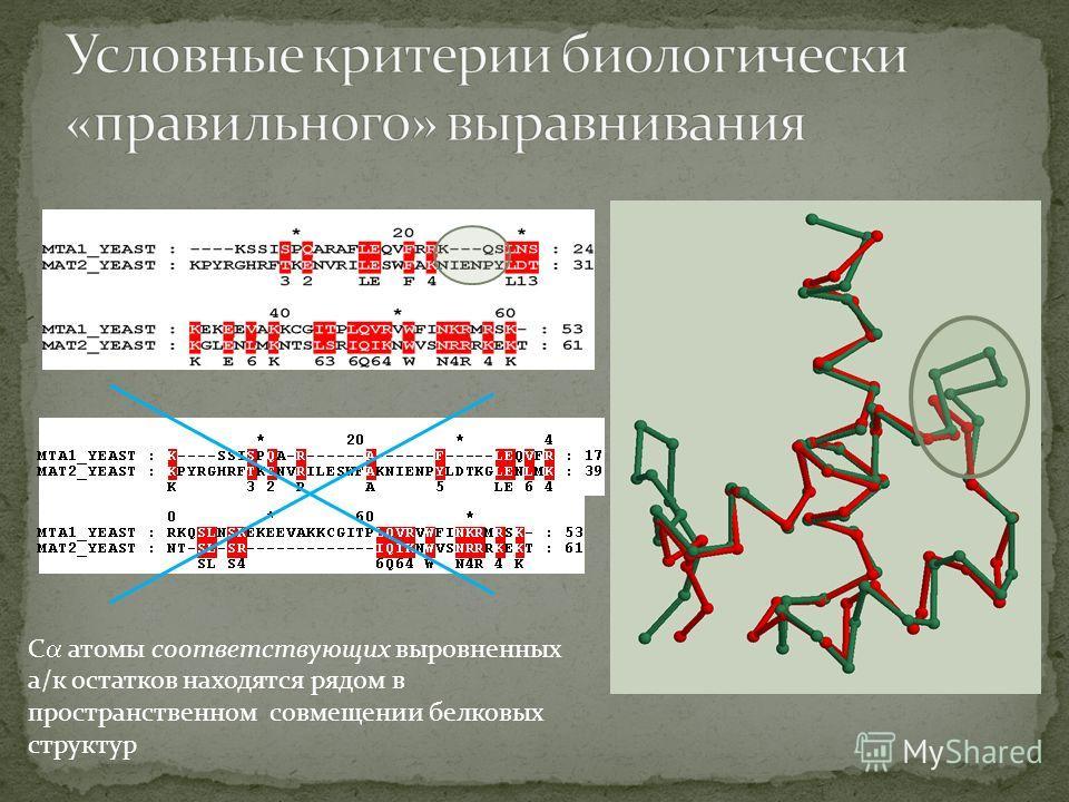 С атомы соответствующих выровненных а/к остатков находятся рядом в пространственном совмещении белковых структур