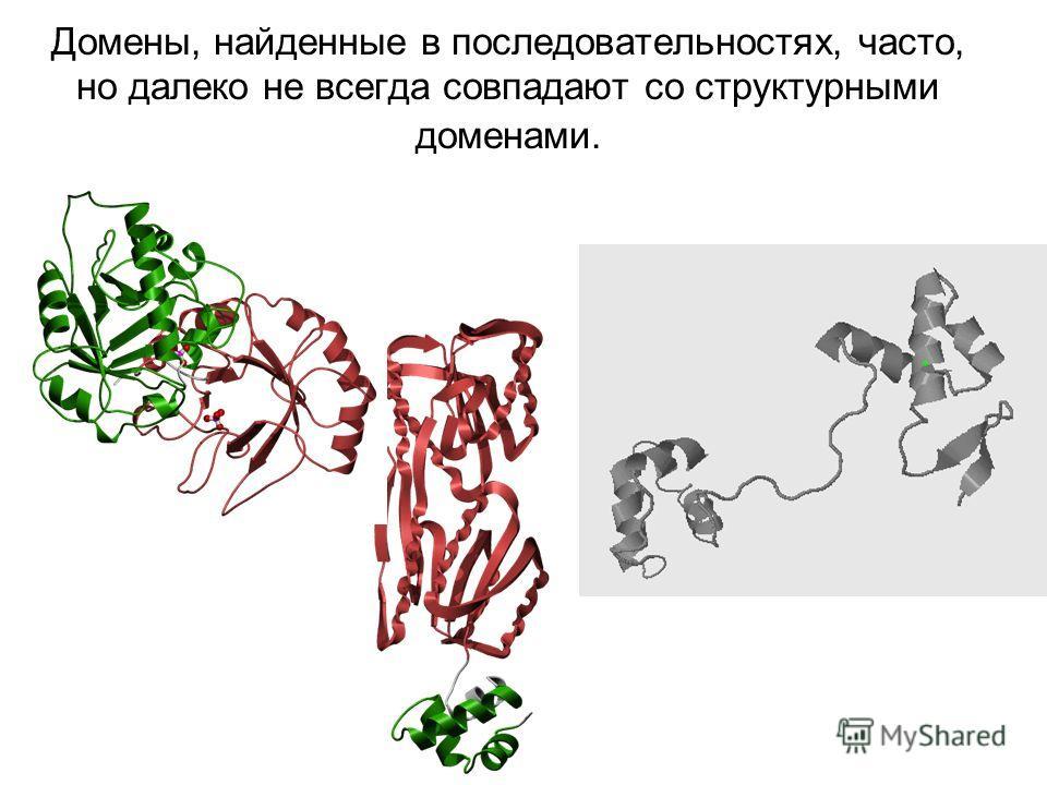 Домены, найденные в последовательностях, часто, но далеко не всегда совпадают со структурными доменами.
