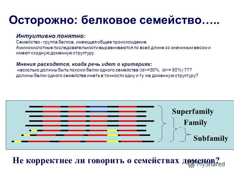 Осторожно: белковое семейство….. Интуитивно понятно: Семейство - группа белков, имеющая общее происхождение. Аминокислотные последовательности выравниваются по всей длине со значимым весом и имеют сходную доменную структуру. Мнения расходятся, когда