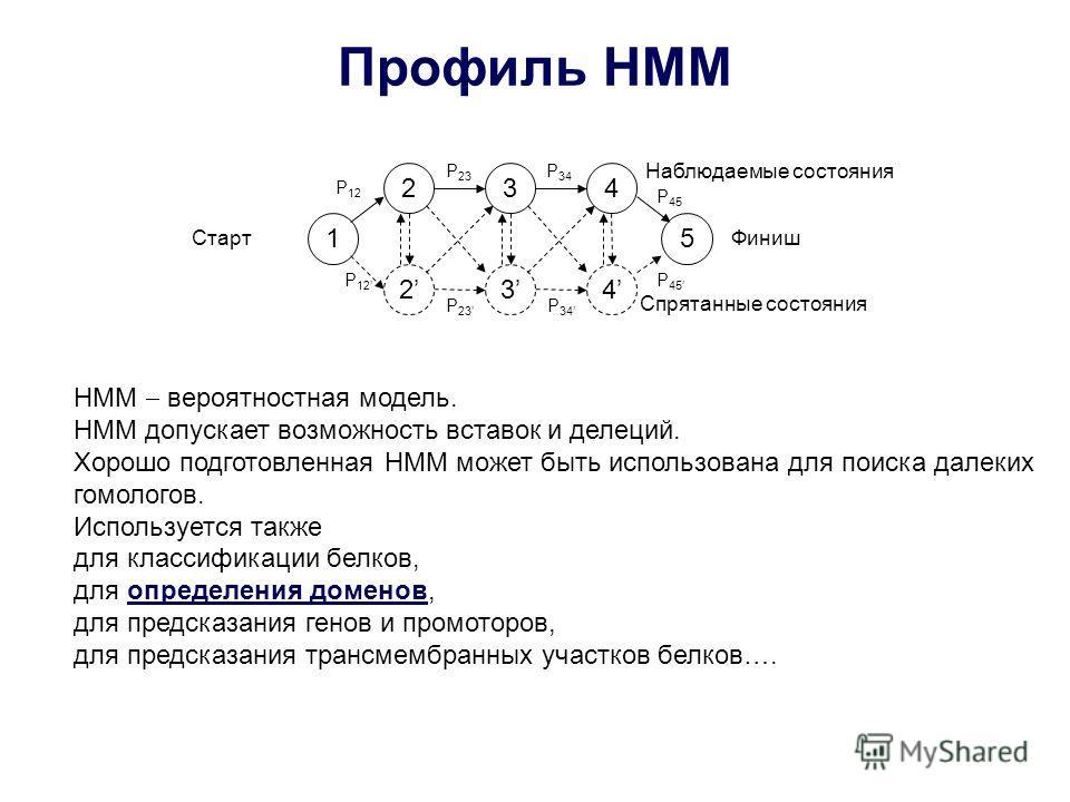 Профиль HMM 1 2 2 3 3 4 4 5 P 12 P 23 P 34 P 45 P 12 P 23 P 34 P 45 СтартФиниш Наблюдаемые состояния Спрятанные состояния HMM вероятностная модель. HMM допускает возможность вставок и делеций. Хорошо подготовленная HMM может быть использована для пои