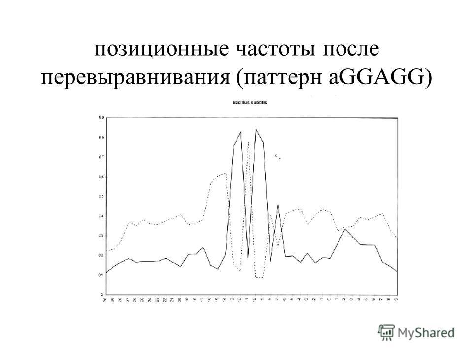 позиционные частоты после перевыравнивания (паттерн aGGAGG)