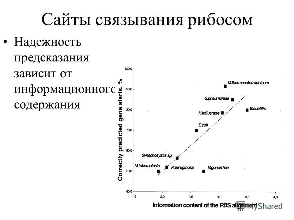 Сайты связывания рибосом Надежность предсказания зависит от информационного содержания