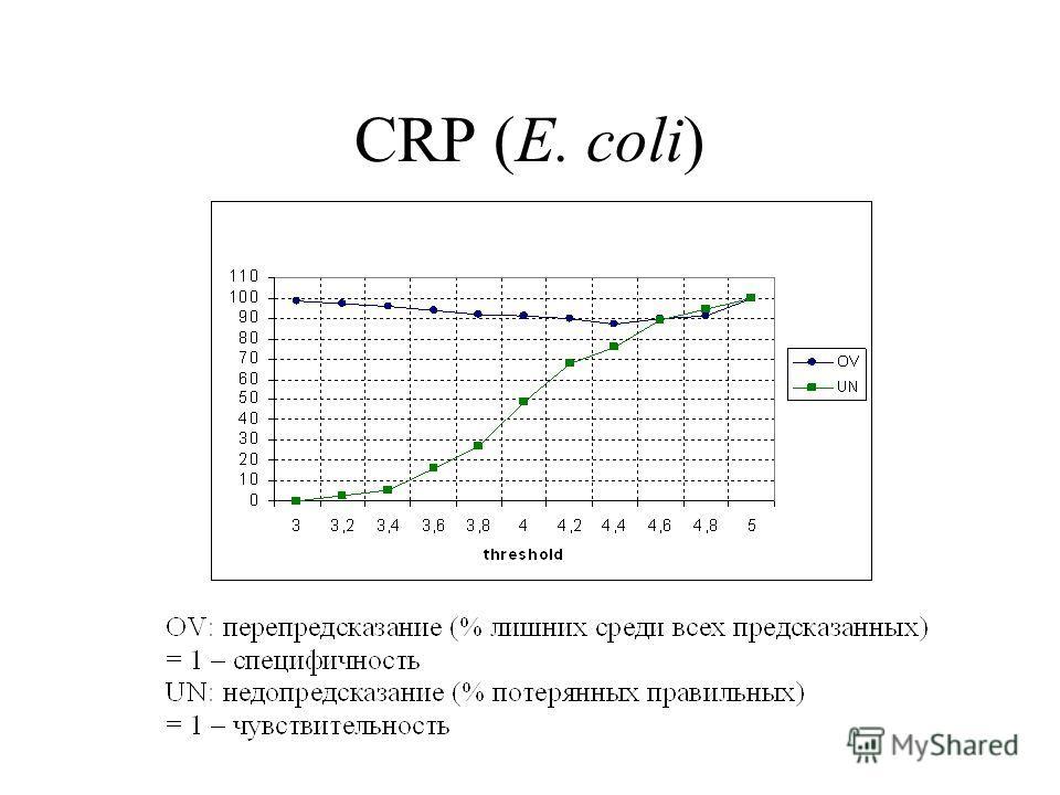 CRP (E. coli)