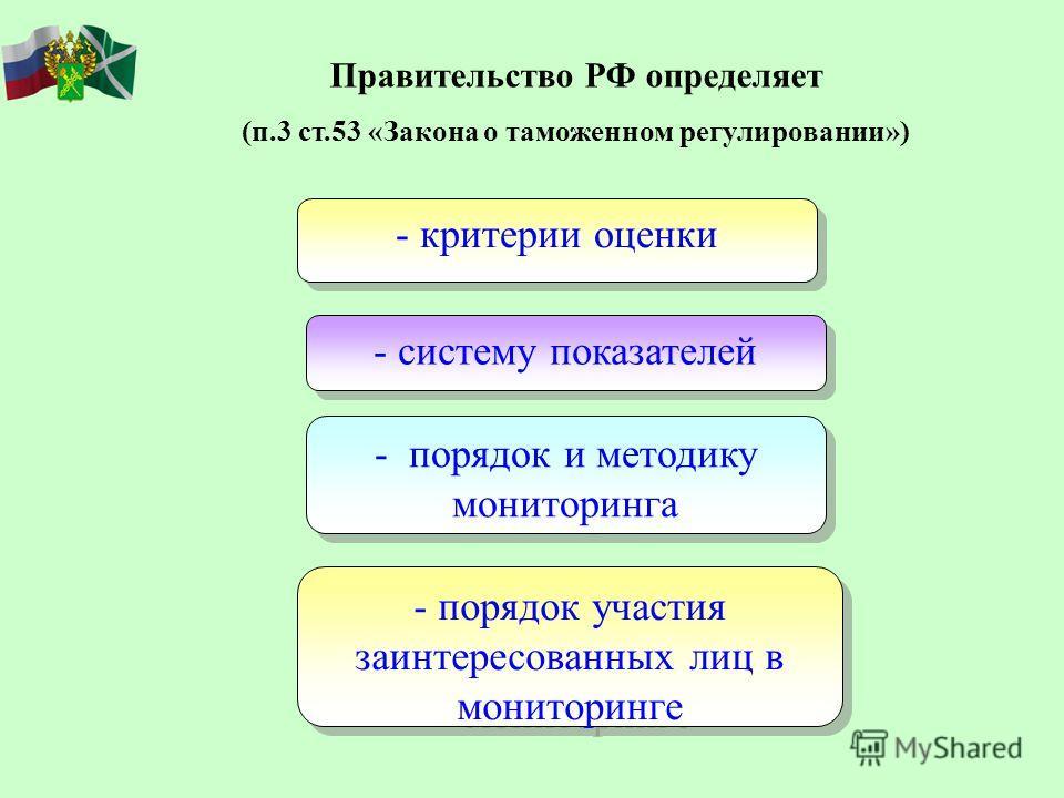 Правительство РФ определяет (п.3 ст.53 «Закона о таможенном регулировании») - систему показателей - порядок и методику мониторинга - критерии оценки - порядок участия заинтересованных лиц в мониторинге