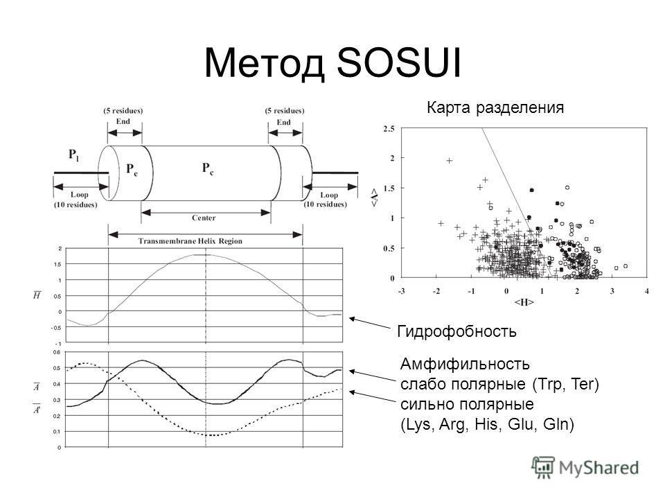 Метод SOSUI Карта разделения Гидрофобность Амфифильность слабо полярные (Trp, Ter) сильно полярные (Lys, Arg, His, Glu, Gln)