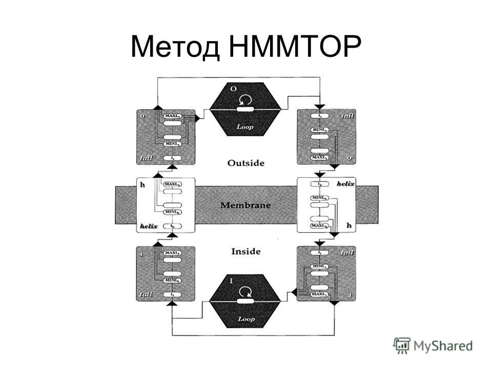 Метод HMMTOP