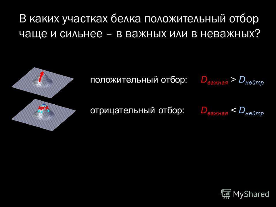 положительный отбор: D важная > D нейтр отрицательный отбор: D важная < D нейтр В каких участках белка положительный отбор чаще и сильнее – в важных или в неважных?