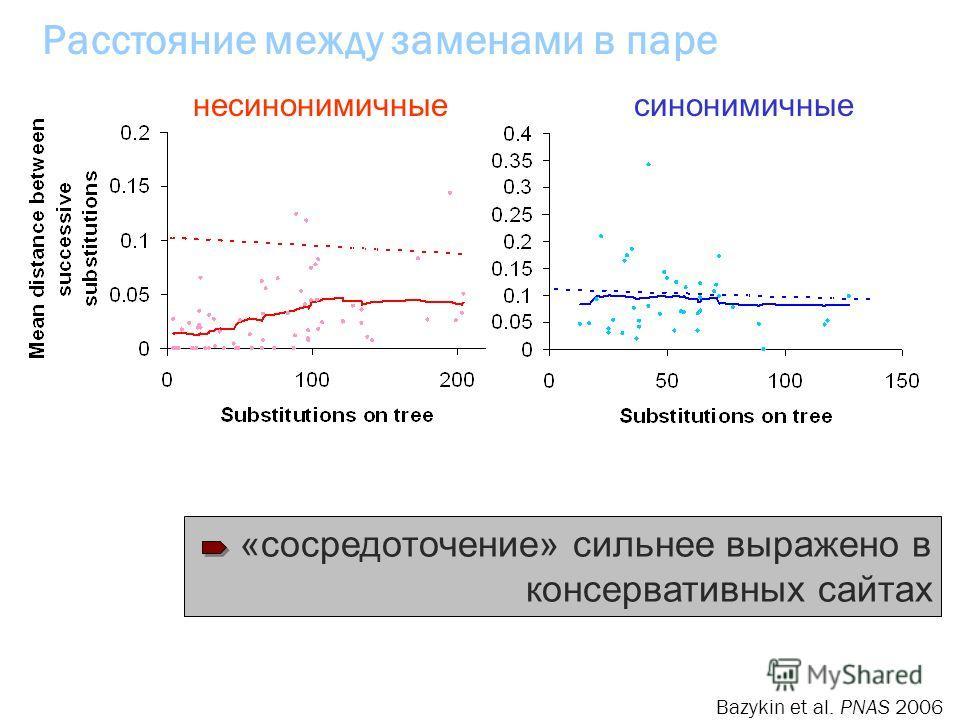 Расстояние между заменами в паре «сосредоточение» сильнее выражено в консервативных сайтах несинонимичныесинонимичные Bazykin et al. PNAS 2006