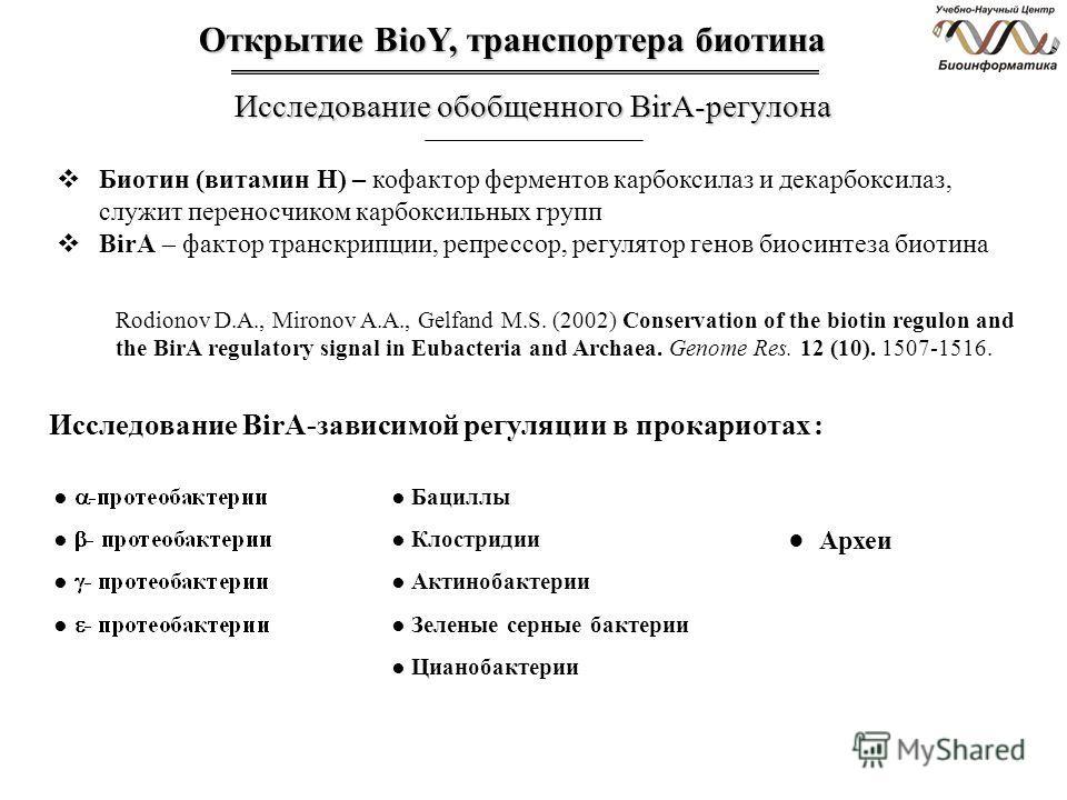 Открытие BioY, транспортера биотина Исследование обобщенного BirA-регулона Биотин (витамин Н) – кофактор ферментов карбоксилаз и декарбоксилаз, служит переносчиком карбоксильных групп BirA – фактор транскрипции, репрессор, регулятор генов биосинтеза