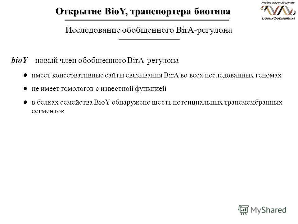 Открытие BioY, транспортера биотина Исследование обобщенного BirA-регулона имеет консервативные сайты связывания BirA во всех исследованных геномах не имеет гомологов с известной функцией в белках семейства BioY обнаружено шесть потенциальных трансме