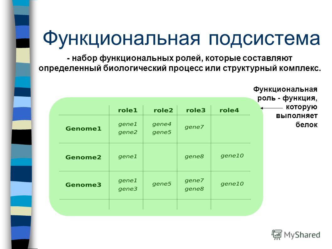 Функциональная подсистема - набор функциональных ролей, которые составляют определенный биологический процесс или структурный комплекс. Функциональная роль - функция, которую выполняет белок