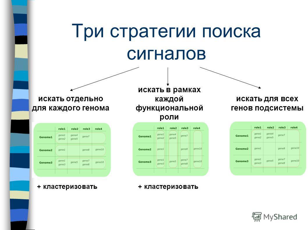 Три стратегии поиска сигналов + кластеризовать искать отдельно для каждого генома искать в рамках каждой функциональной роли искать для всех генов подсистемы