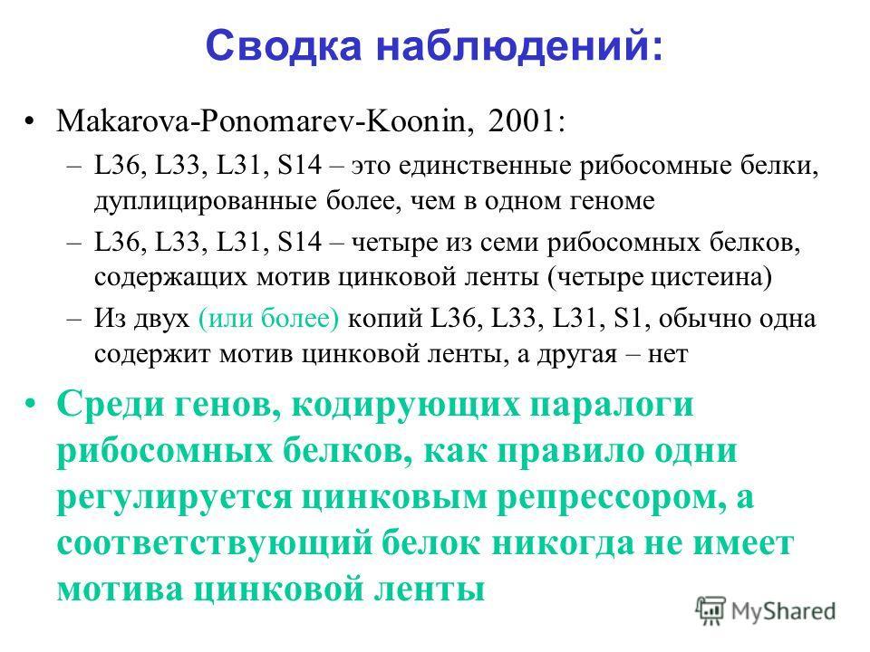Сводка наблюдений: Makarova-Ponomarev-Koonin, 2001: –L36, L33, L31, S14 – это единственные рибосомные белки, дуплицированные более, чем в одном геноме –L36, L33, L31, S14 – четыре из семи рибосомных белков, содержащих мотив цинковой ленты (четыре цис