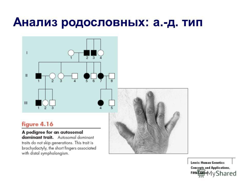 Анализ родословных: а.-д. тип
