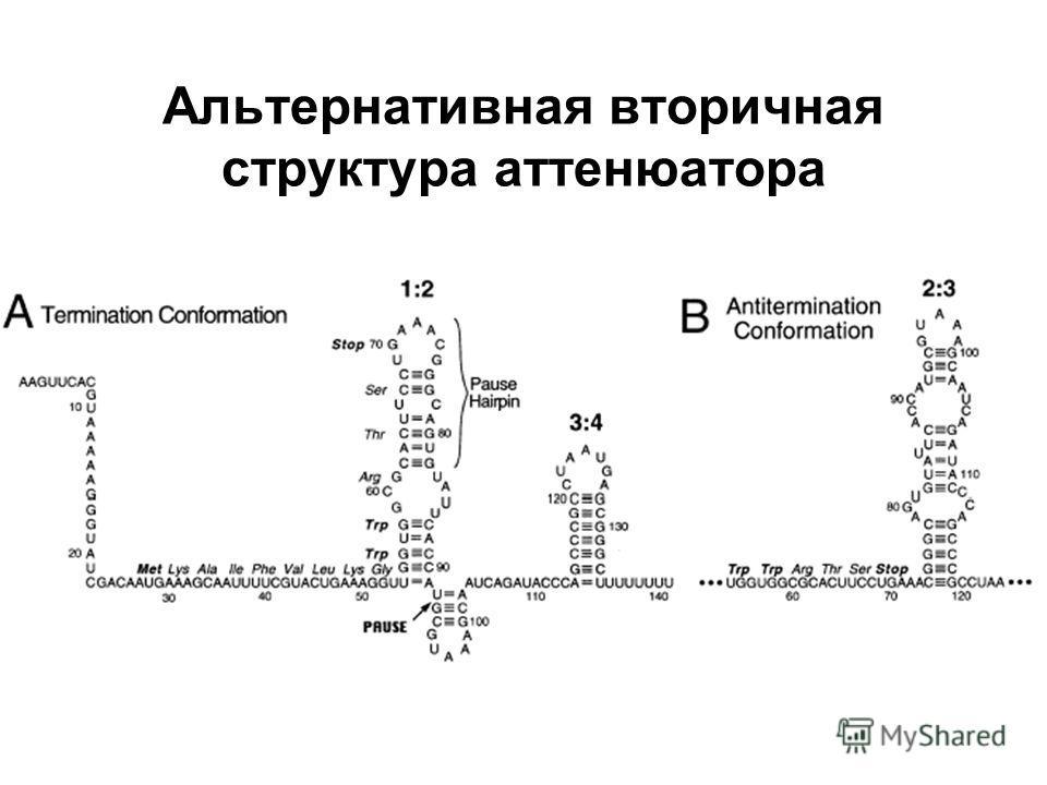 Альтернативная вторичная структура аттенюатора