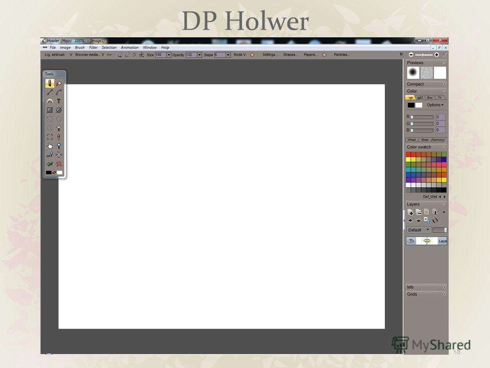 DP Holwer 18