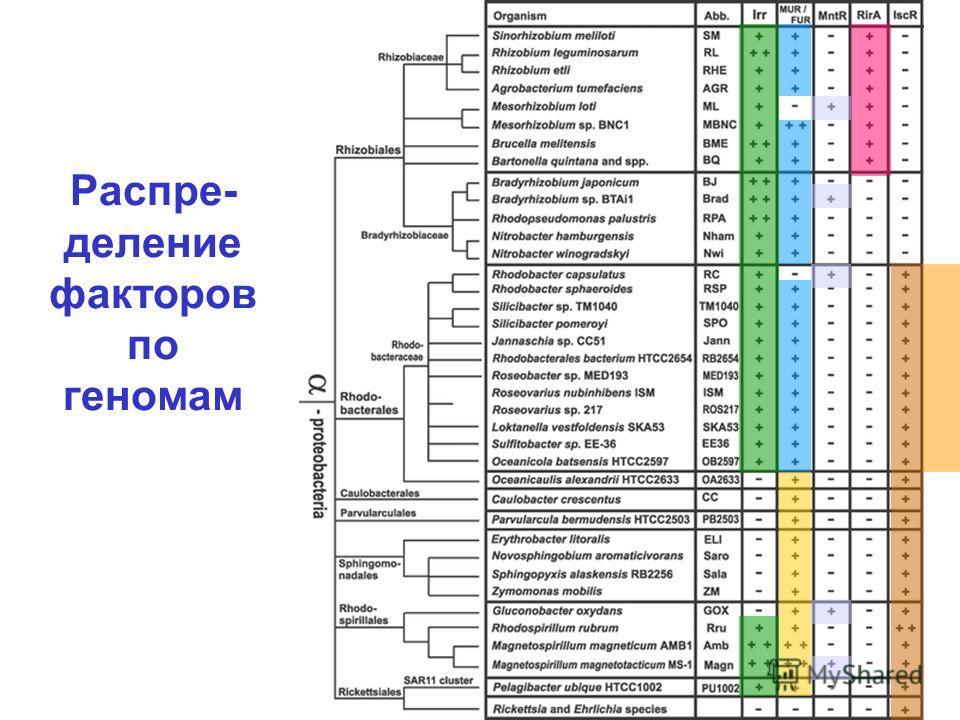 Распре- деление факторов по геномам