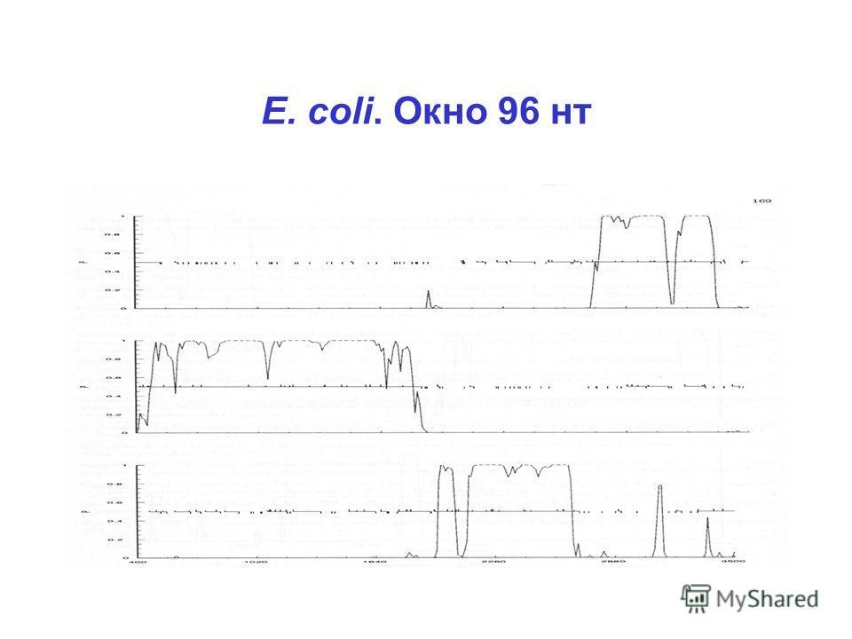 E. coli. Окно 96 нт