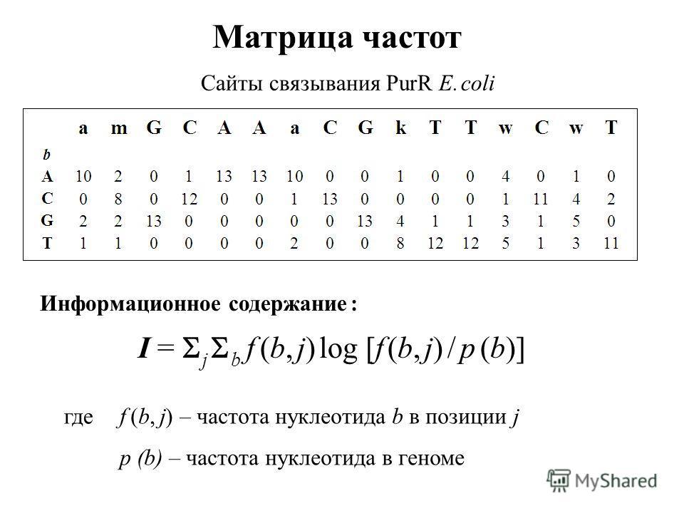 Матрица частот Сайты связывания PurR E. coli Информационное содержание : I = j b f (b, j) log [f (b, j) / p (b)] f (b, j) – частота нуклеотида b в позиции j p (b) – частота нуклеотида в геноме где