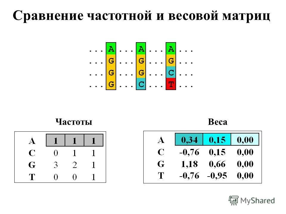 Сравнение частотной и весовой матриц ЧастотыВеса