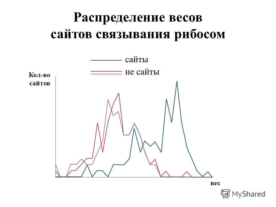Распределение весов сайтов связывания рибосом сайты не сайты вес Кол-во сайтов