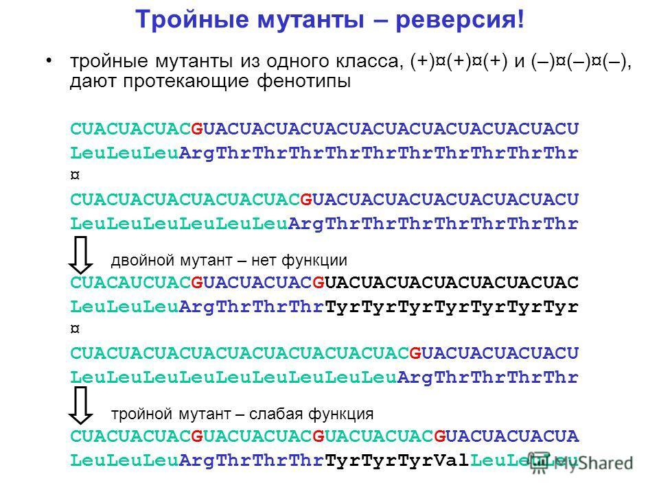 Тройные мутанты – реверсия! тройные мутанты из одного класса, (+)¤(+)¤(+) и (–)¤(–)¤(–), дают протекающие фенотипы CUACUACUACGUACUACUACUACUACUACUACUACUACUACU LeuLeuLeuArgThrThrThrThrThrThrThrThrThrThr ¤ CUACUACUACUACUACUACGUACUACUACUACUACUACUACU LeuL