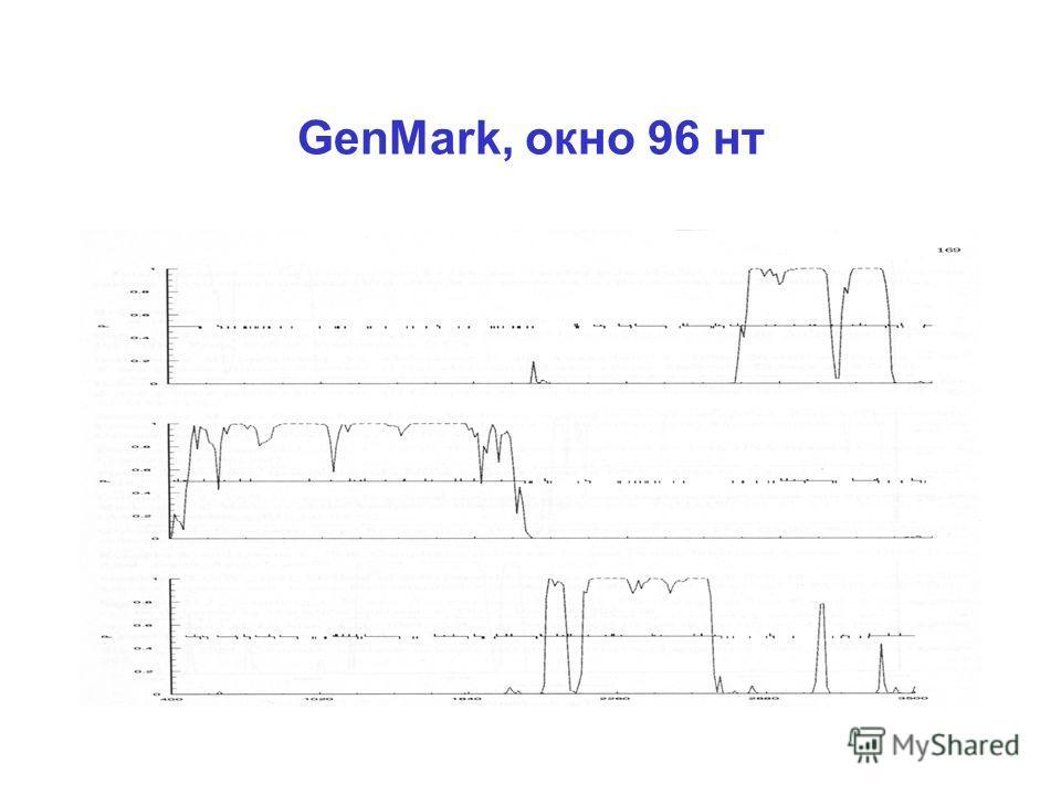 GenMark, окно 96 нт