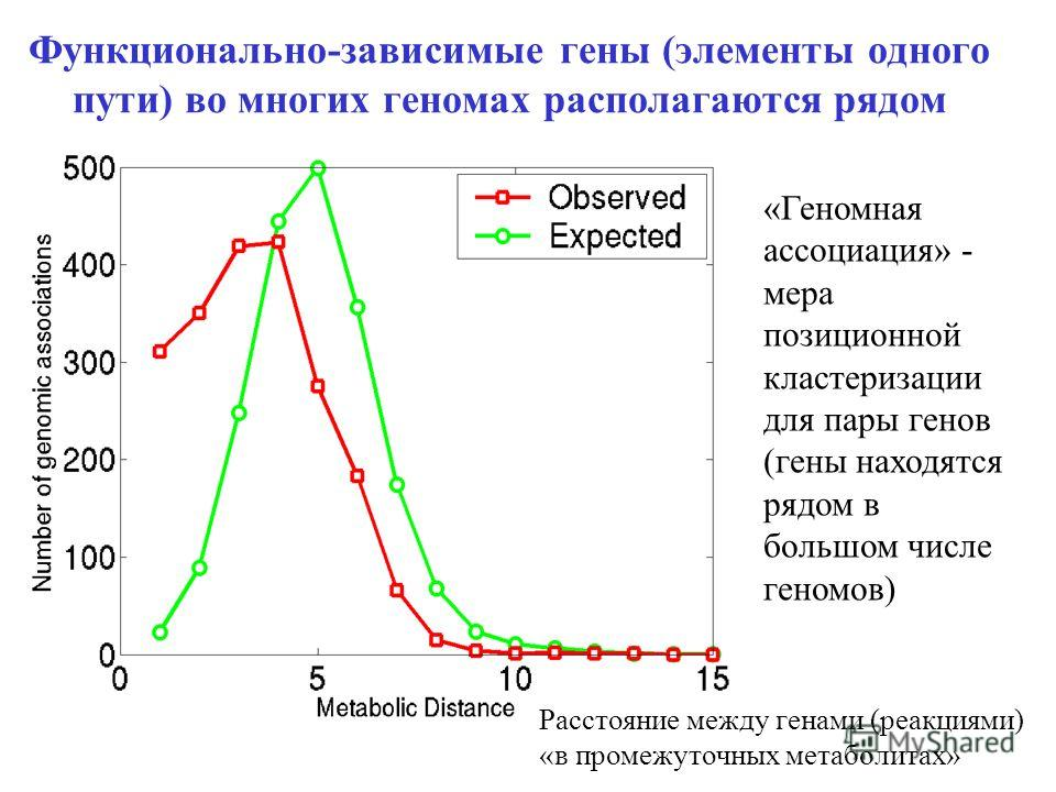 Расстояние между генами (реакциями) «в промежуточных метаболитах» Функционально-зависимые гены (элементы одного пути) во многих геномах располагаются рядом «Геномная ассоциация» - мера позиционной кластеризации для пары генов (гены находятся рядом в
