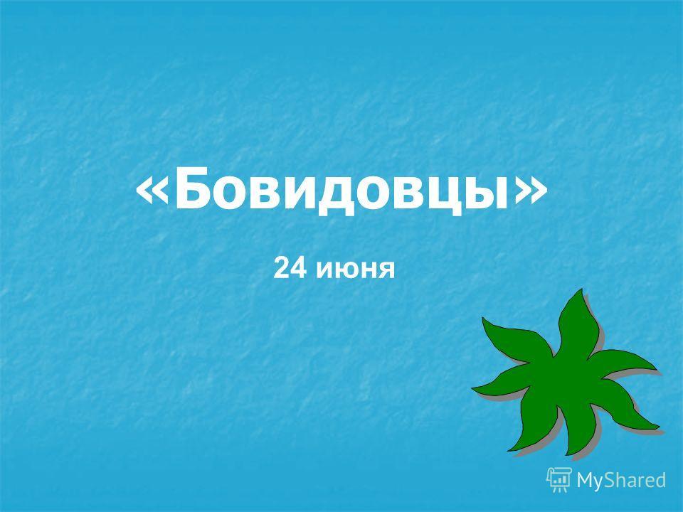 «Бовидовцы» 24 июня