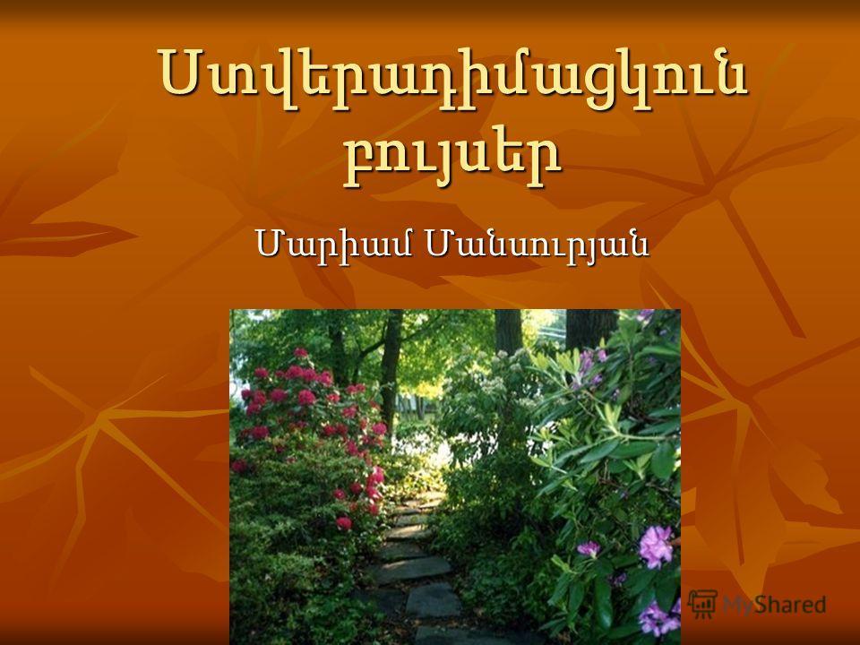 Ստվերադիմացկուն բույսեր Մարիամ Մանսուրյան