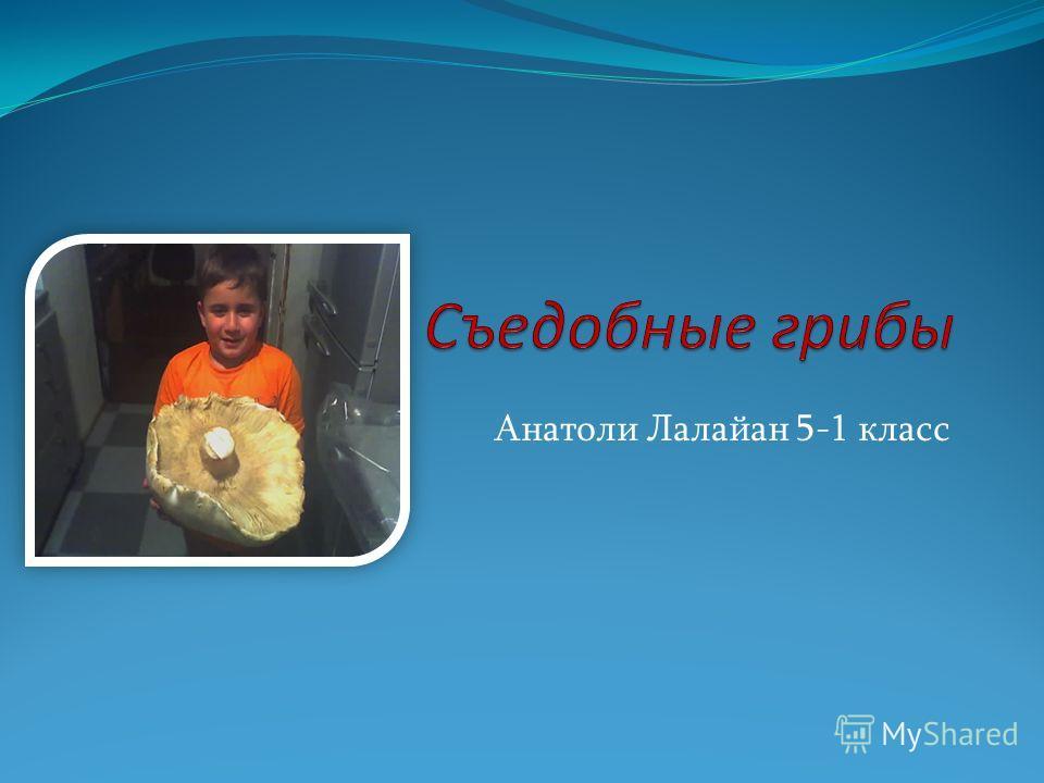 Анатоли Лалайан 5-1 класс