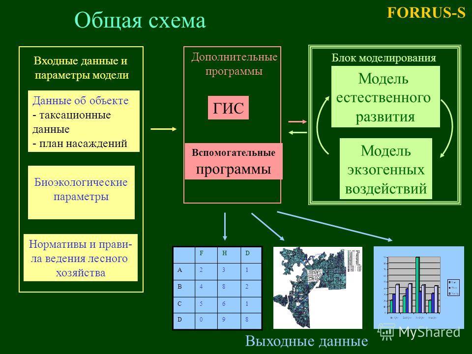 Общая схема Данные об объекте - таксационные данные - план насаждений Биоэкологические параметры Нормативы и прави- ла ведения лесного хозяйства ГИС Вспомогательные программы Входные данные и параметры модели Модель естественного развития Модель экзо